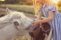 How Kids Who Love Animals Can Make Money