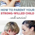 how to parent a strong willed child