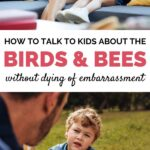 bird and bees talk